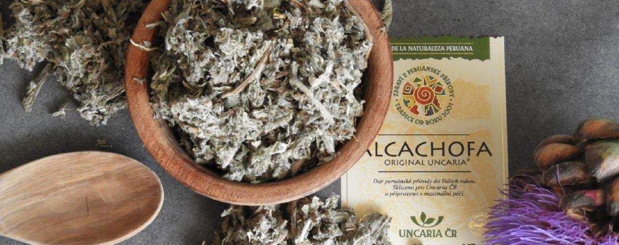 Alcachofa – naše záchrana posvátečním hodování
