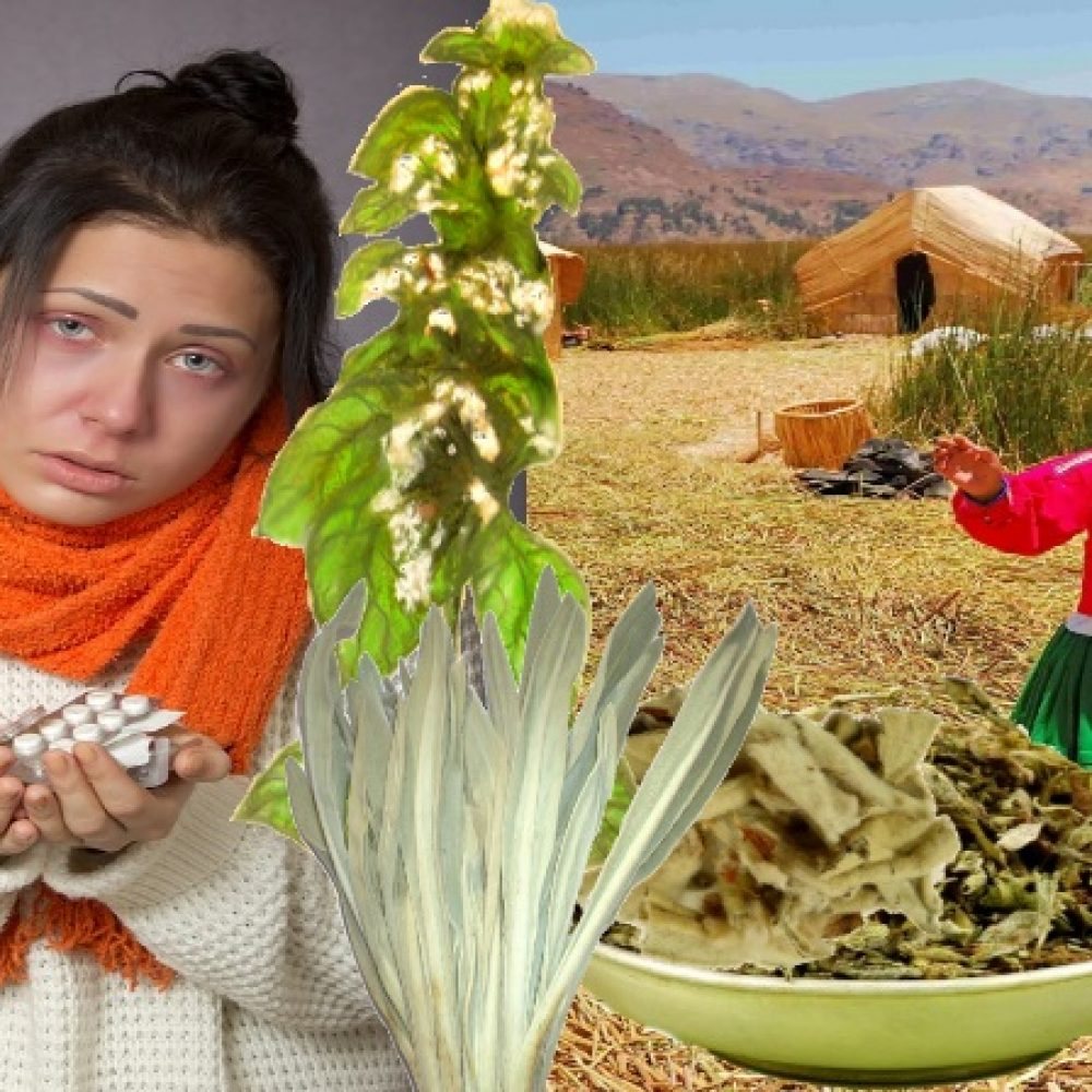 Chřipkový maraton aneb BERU PERU